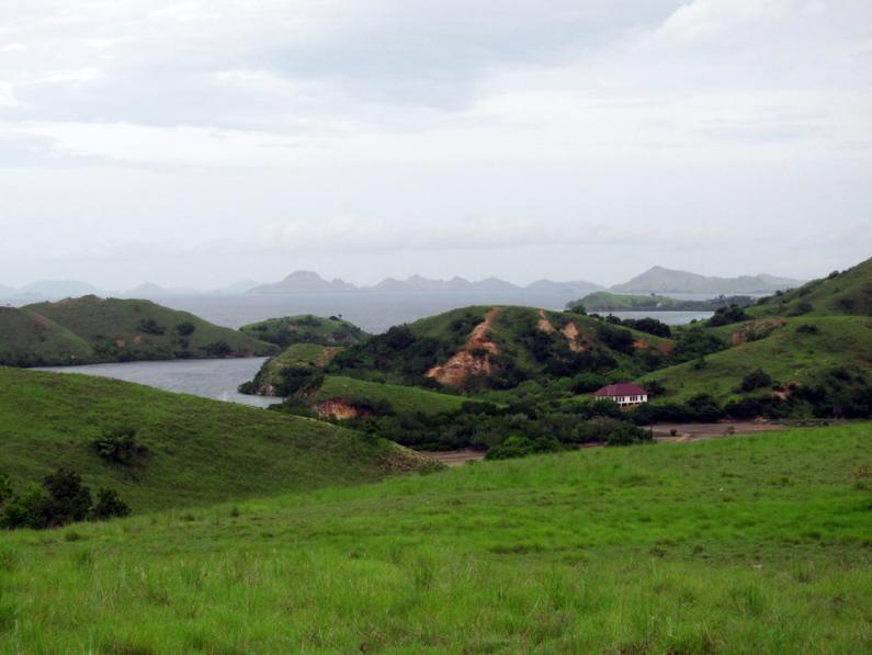 Komodo Rinca island