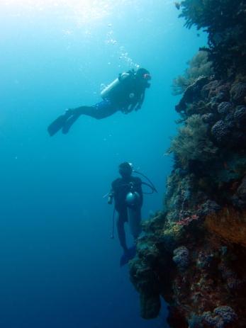 scuba diving Komodo Indonesia Pengah Kecil