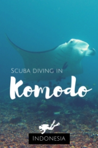 Scuba diving in Komodo Indonesia