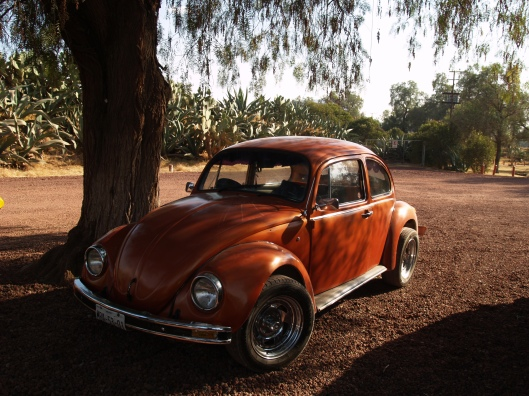"""the """"vocho"""" beetle car in Teotihuacan North of Mexico city"""
