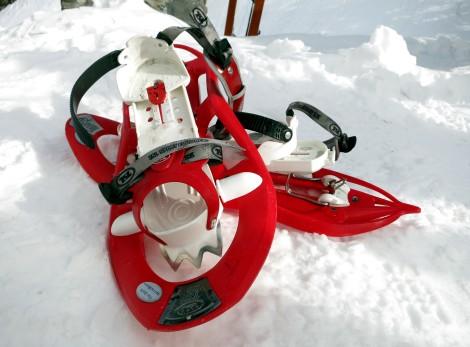 snow shoes Lioson Switzerland