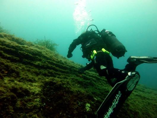 Procida Italy scuba diving