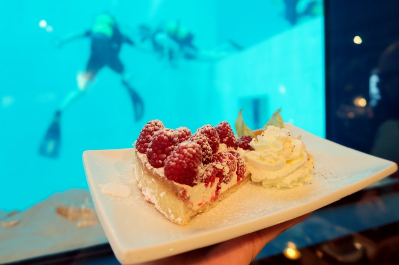 raspberry pie Nemo 33 restaurant