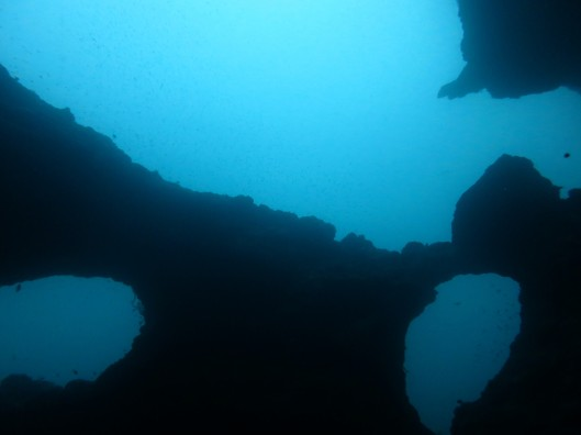 Cathedral dive site Pescador island Moalboal Cebu Philippines