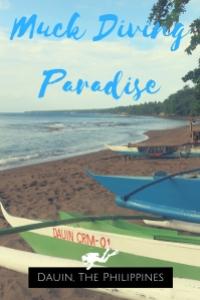 Muck Diving Paradise Dauin Philippines
