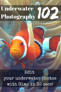 Underwater Photography 102 Edit your photos with Gimp for free in 30 secs
