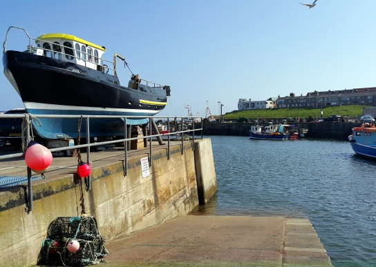 Harbour Seahouses England UK