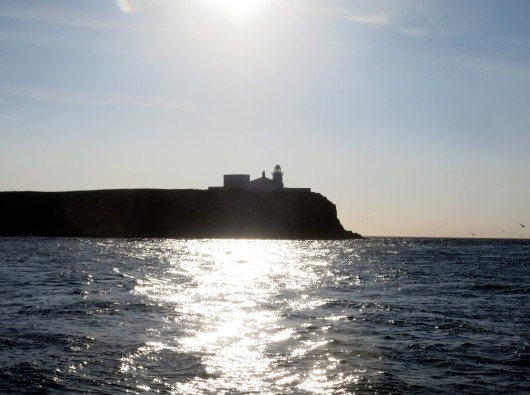scuba diving Farne Islands England UK