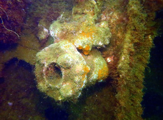 Scuba diving Churchill Barriers Orkney Scotland