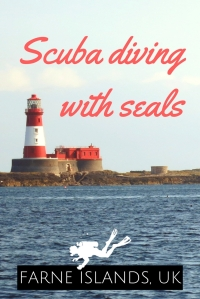 Scuba diving with seals Farne Islands UK