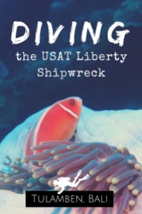 Diving the USAT Liberty Shipwreck Tulamben Bali Indonesia