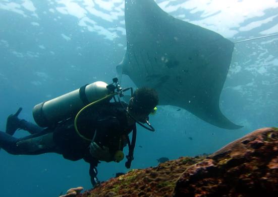 Scuba diving Manta Point Nusa Penida Bali Indonesia