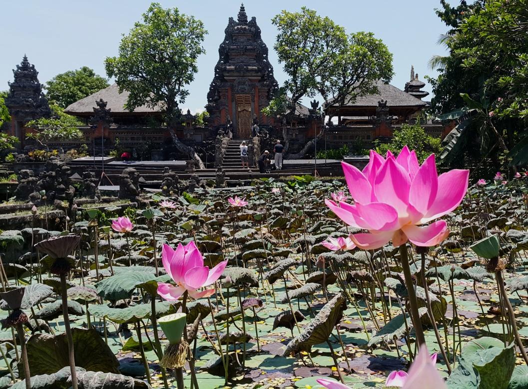 Lotus Cafe Ubud Bali Indonesia