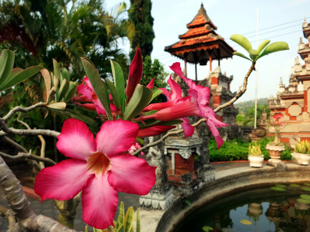 Banjar Temple Bali Indoensia