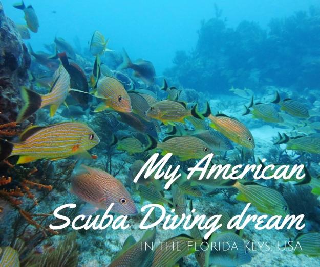 My American Scuba Diving dream FB