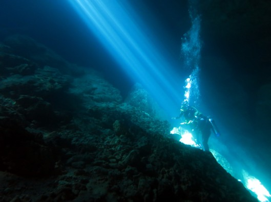 Devil's Den Scuba diving Cavern Cave Williston Florida USA