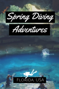 Spring Diving Adventures North Florida USA