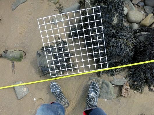 Capturing our Coast survey Cramond Promenade Edinburgh Scotland