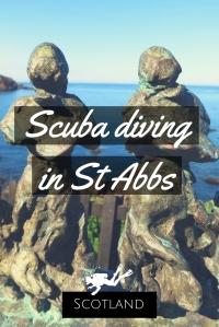Scuba diving in St Abbs Scotland