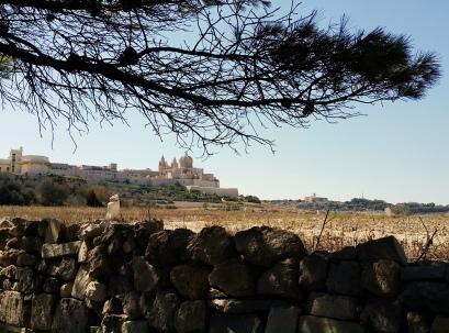 Visit Mdina Malta