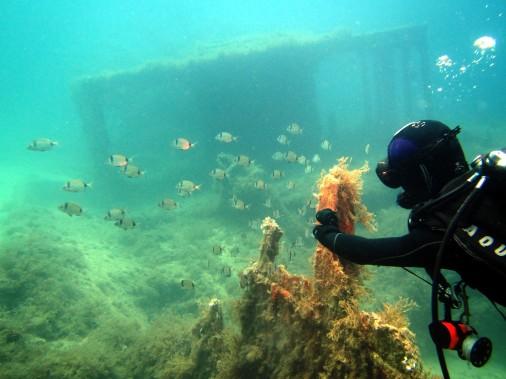 wreck diving the HMS Maori Valletta Malta