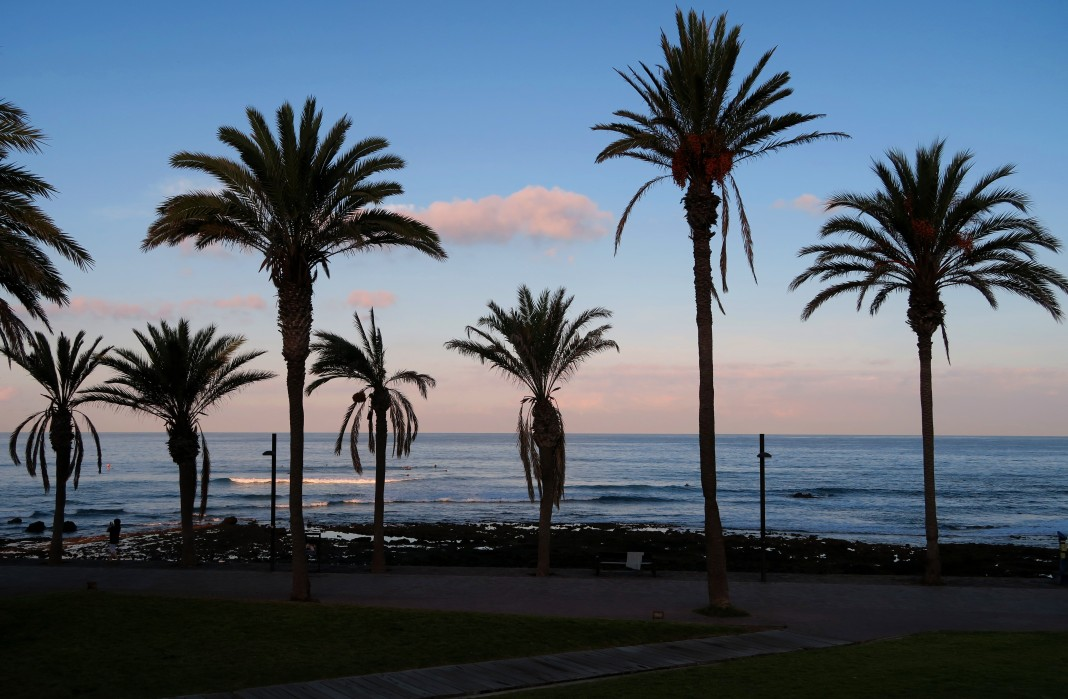 Playas de las Americas Tenerife Canary Islands