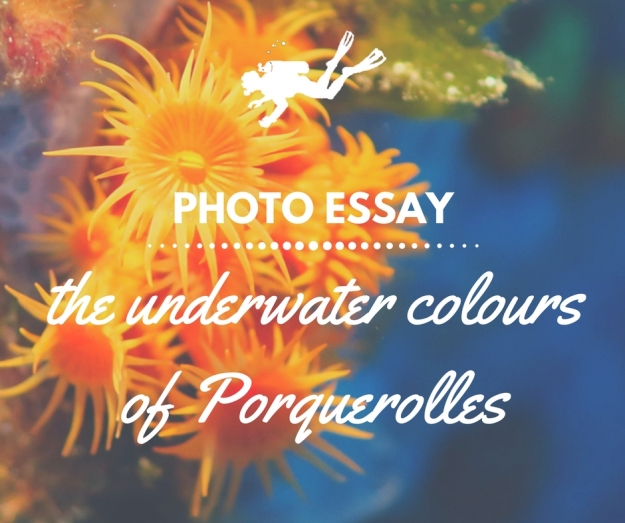 photo essay porquerolles