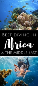 Best diving in Africa and Middle East
