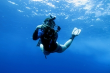 Free diving back wall of Molokini Crater Maui Hawaii USA