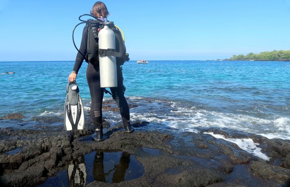 Dive Shops In Hawaii Big Island