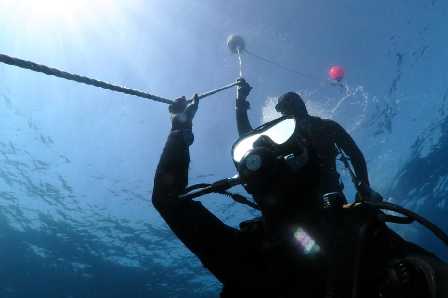 Florine Scuba diving in Toulon France