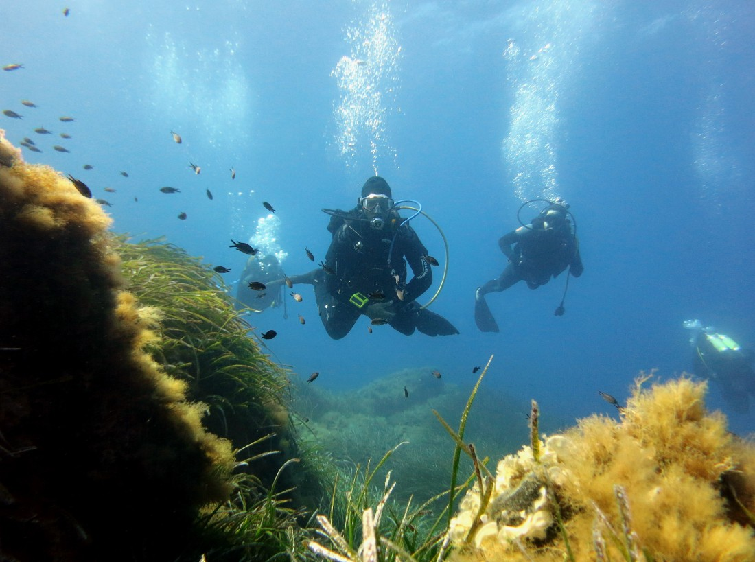 Scuba diving in Port-Cros National Park France